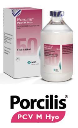 클릭하여 다운로드 - Porcilis PCV M Hyo brochure